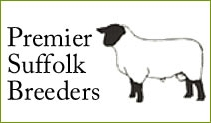 Premier Suffolk Breeders